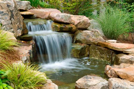 pond and water garden design, build, and maintenance